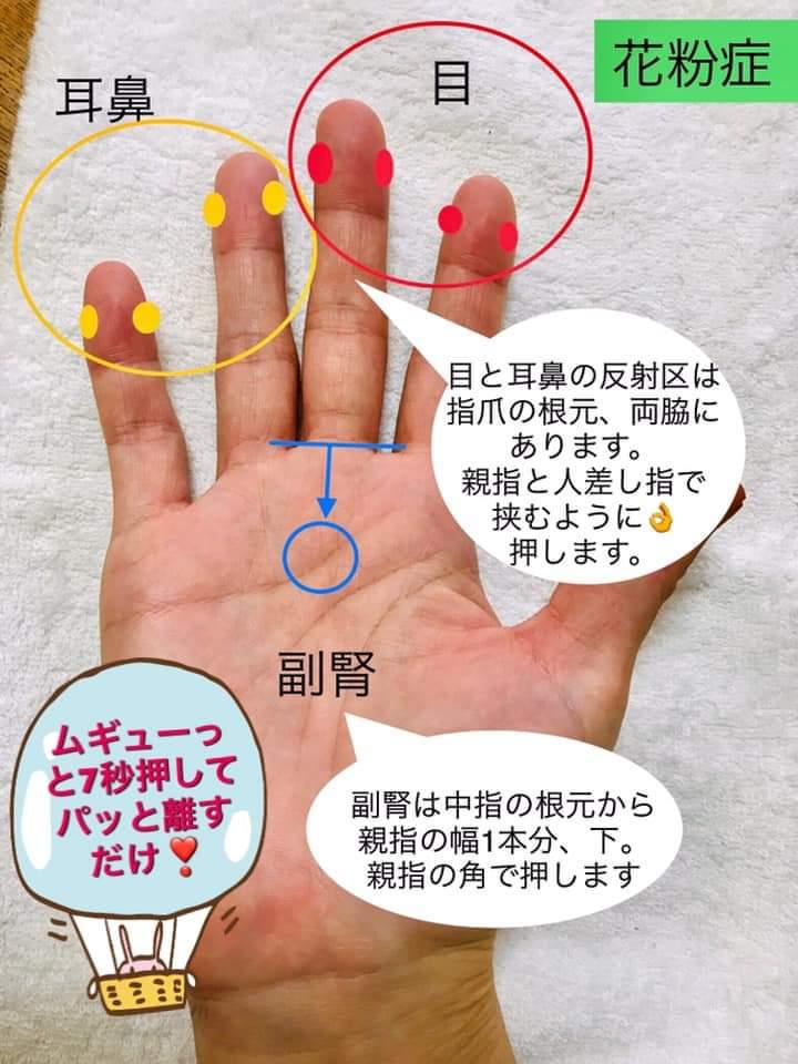 手のひらデトックス協会 プロフィール画像3